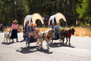 Women and girls in old-fashioned clothing riding horse-drawn carriages