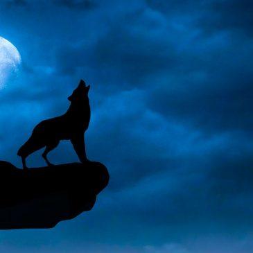 Shine On, Harvest Spooky Mountain Mini-Moon