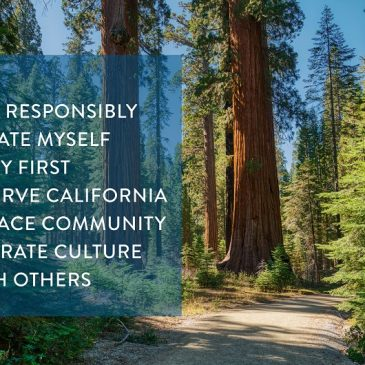 Handy Tips for Responsible Forest Recreation